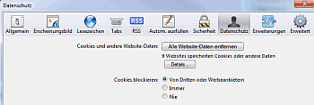 Screenshot Browsereinstellungen Safari